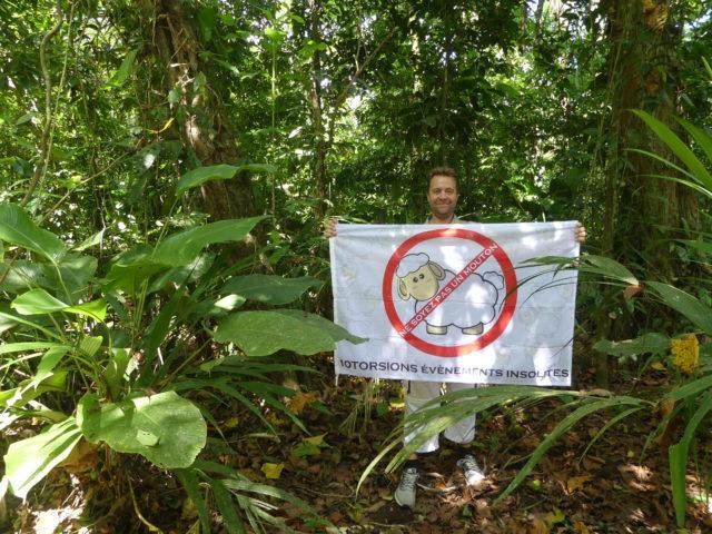10Torsions dans la forêt tropicale du Costa Rica