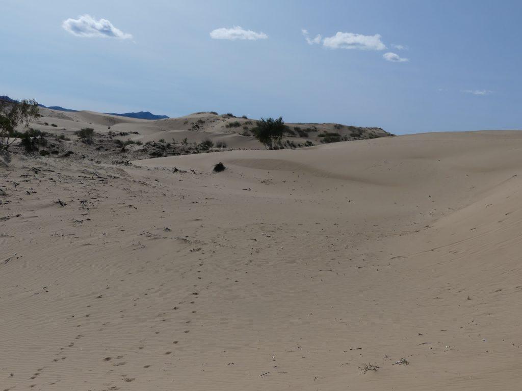 Dunes de sable du mini-Gobi