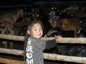 Kido des Nomades devant son troupeau