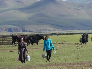 Audrey revient de la traite des yaks avec la maman de la famille nomade