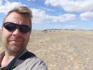 bibi et les chameaux