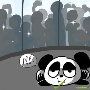 Le panda (Eve)