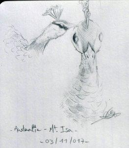 Oiseaux du lac par Eve