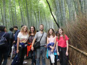 la forêt de bambous à Kyoto