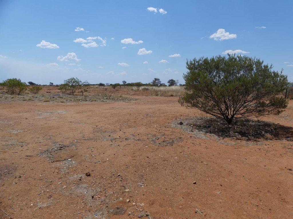 le bush raréfié de l'Outback lointain