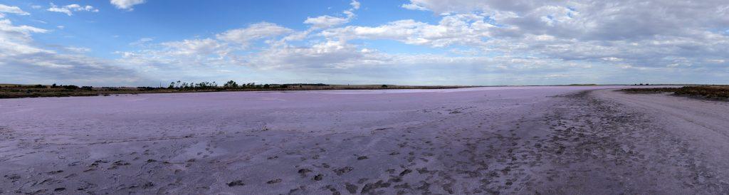 le lac rose de Meningie