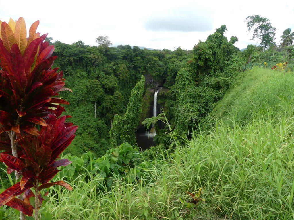 cascade dans la jungle