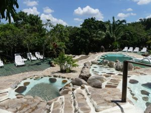 Bioparc : 15 piscines