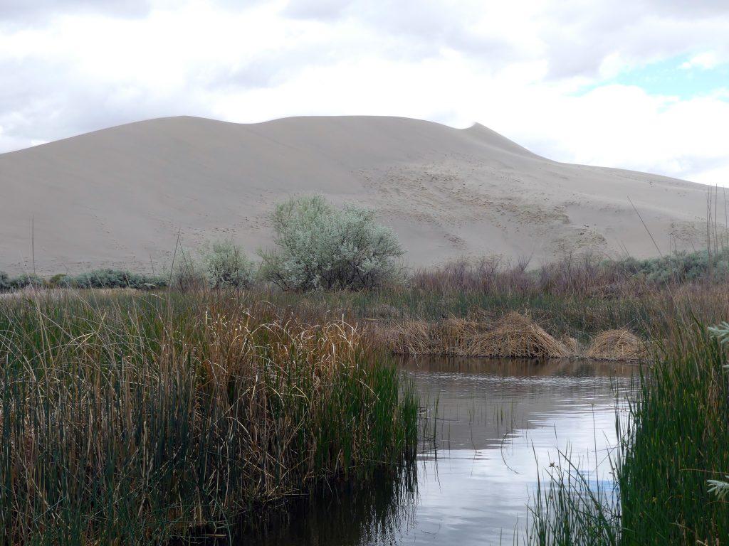 Bruneau Dunes State Park, Idaho, ça rappelle la Mongolie