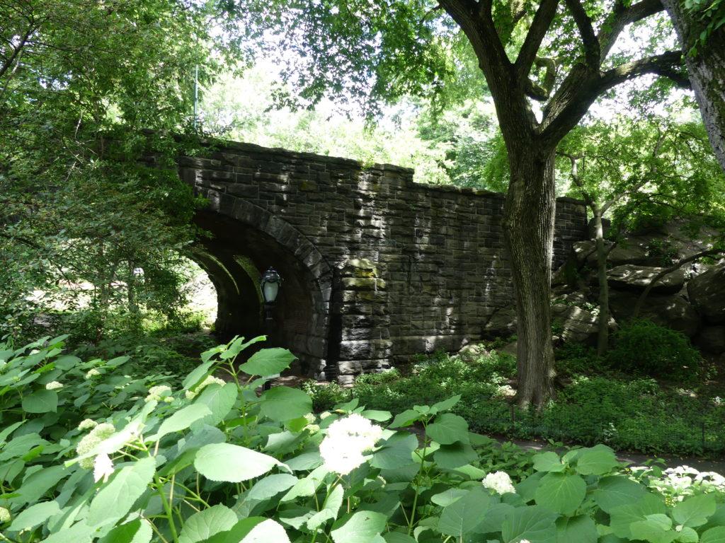 Central Park et ses arches bien connues