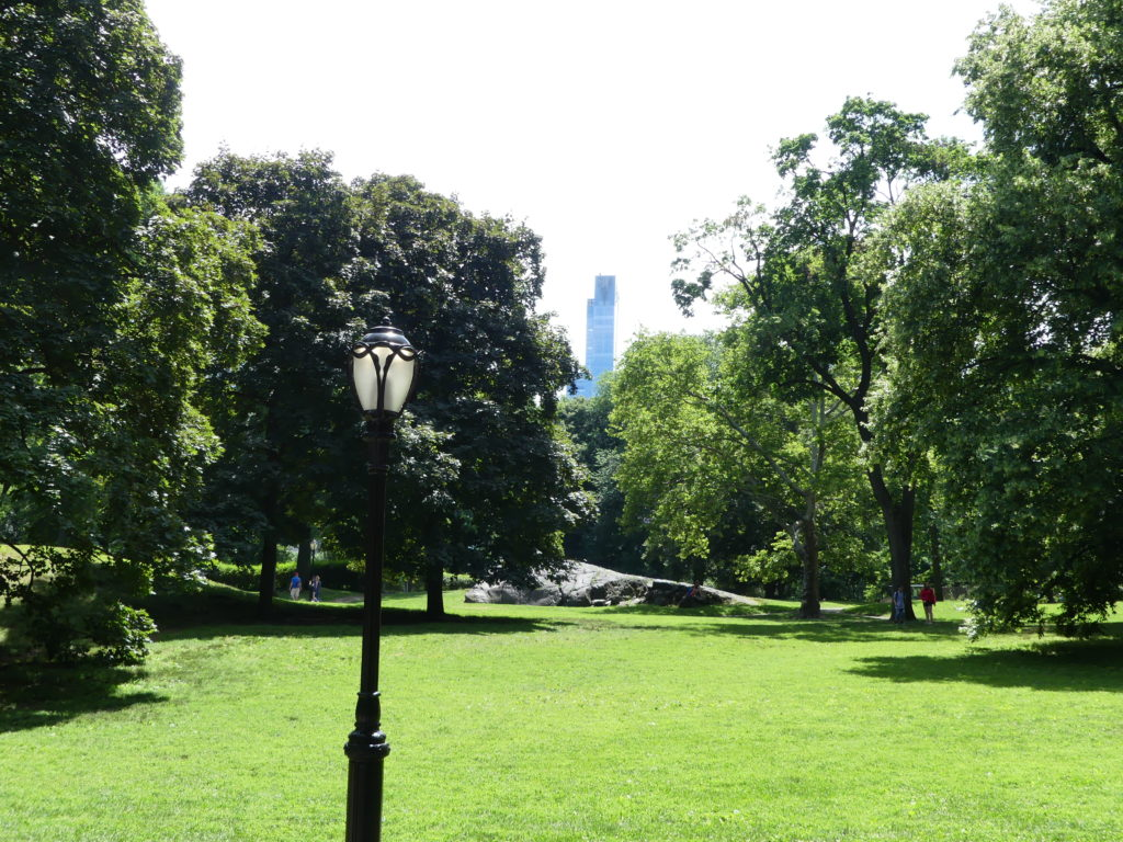 Tout autour du parc, des buildings