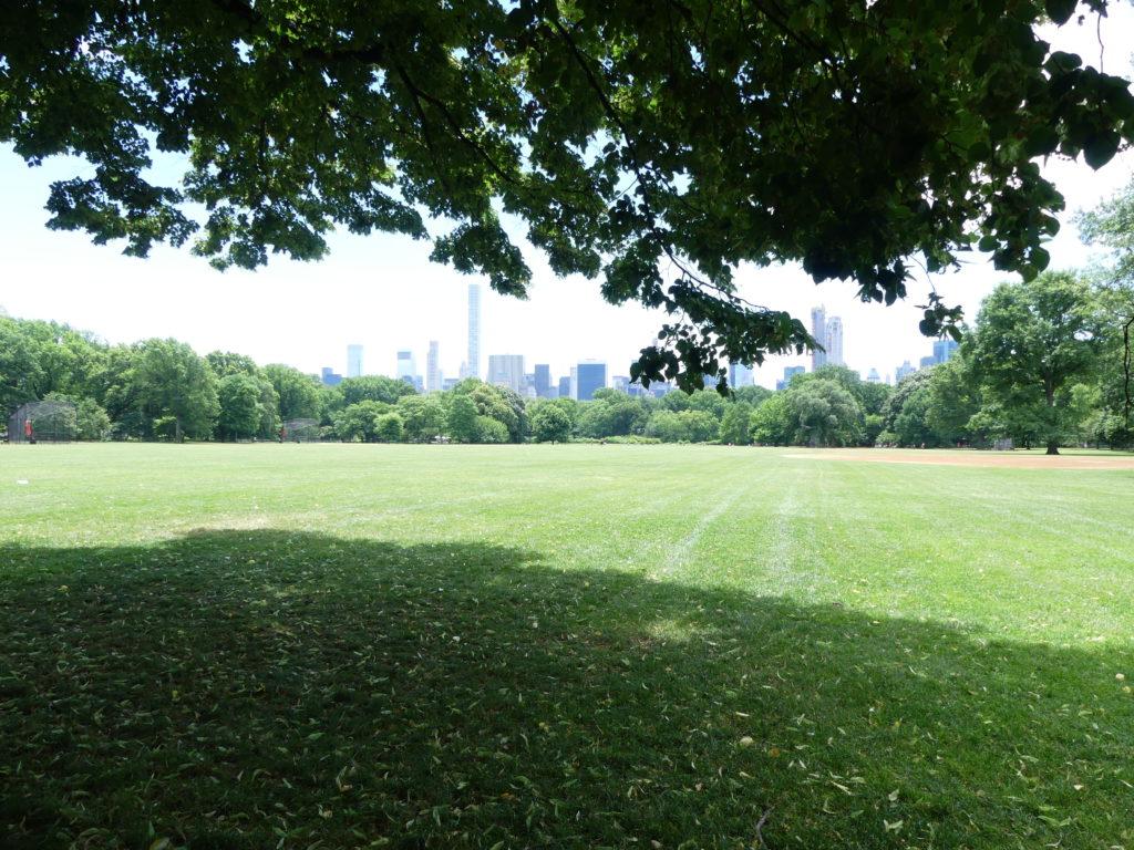 """Central Park : la vue """"classique"""""""