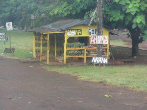 Iguazu - Posadas : petits vendeurs en bord de route