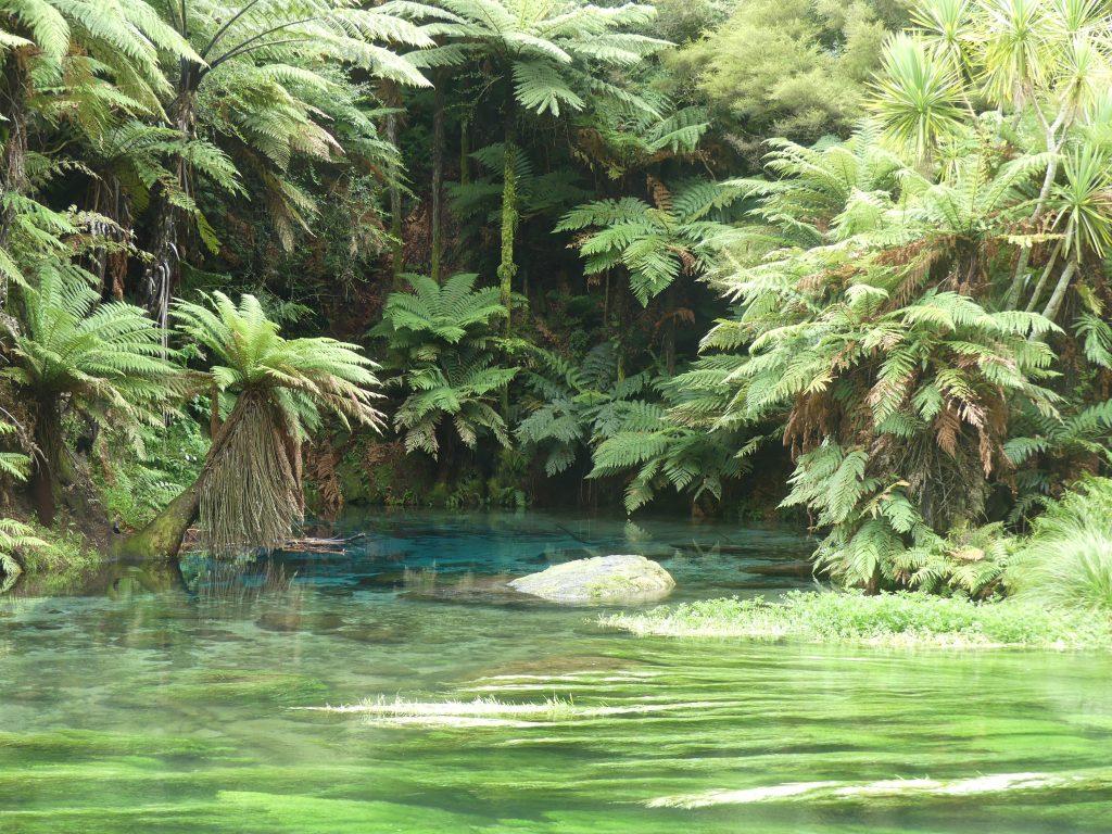 la source bleue au milieu de la rivière