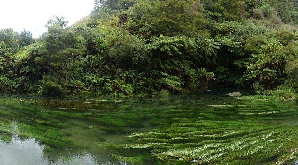 la rivière coule paisiblement