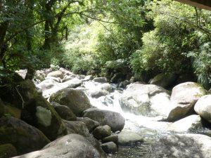Pas moche ce ruisseau et ses cascades !