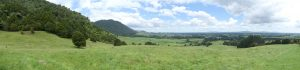 Panorama sur la campagne de Matamata