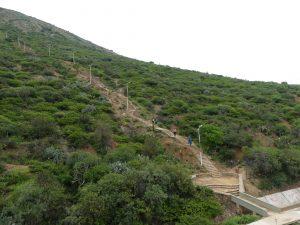 les fameuses marches d'escalier