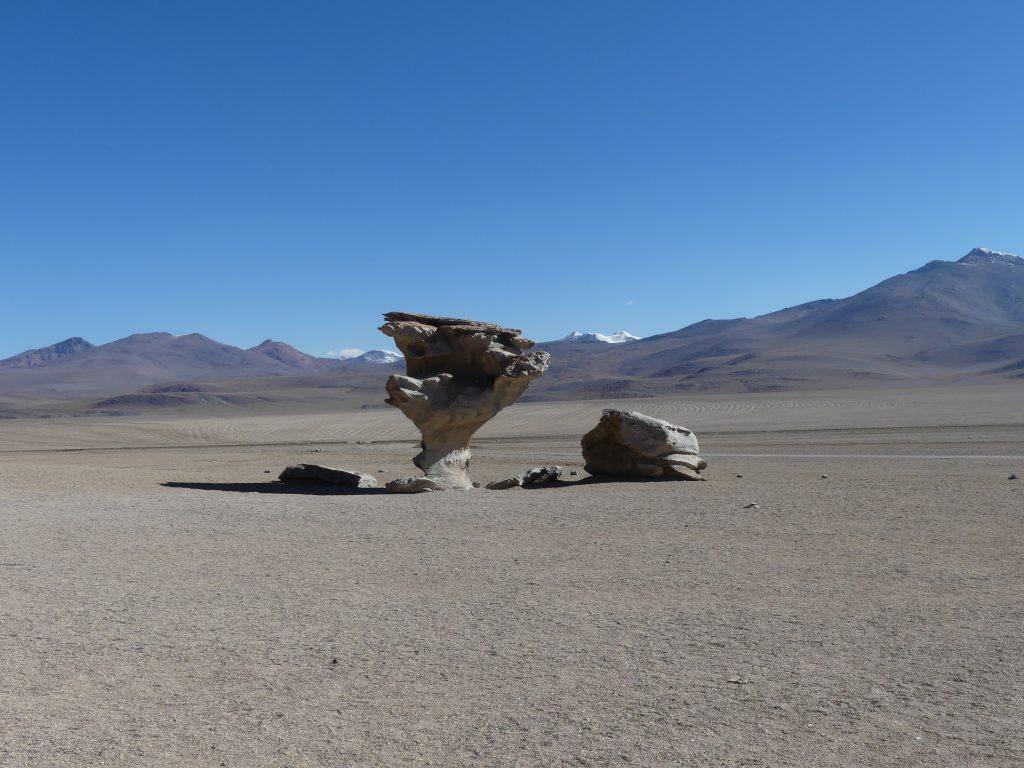 un arbre de roc