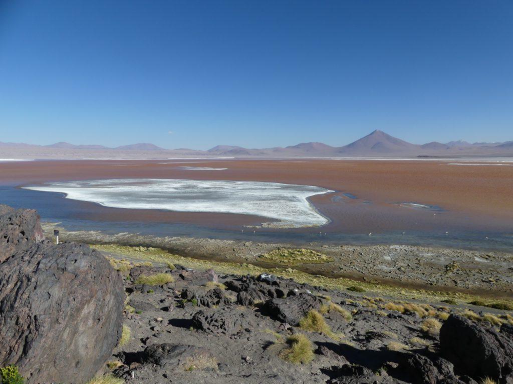 Laguna colorado, 4270 m alt.