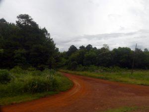 vue le matin en arrivant à Iguazu