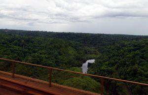 en approche d'Iguazu : jungle et eau partout