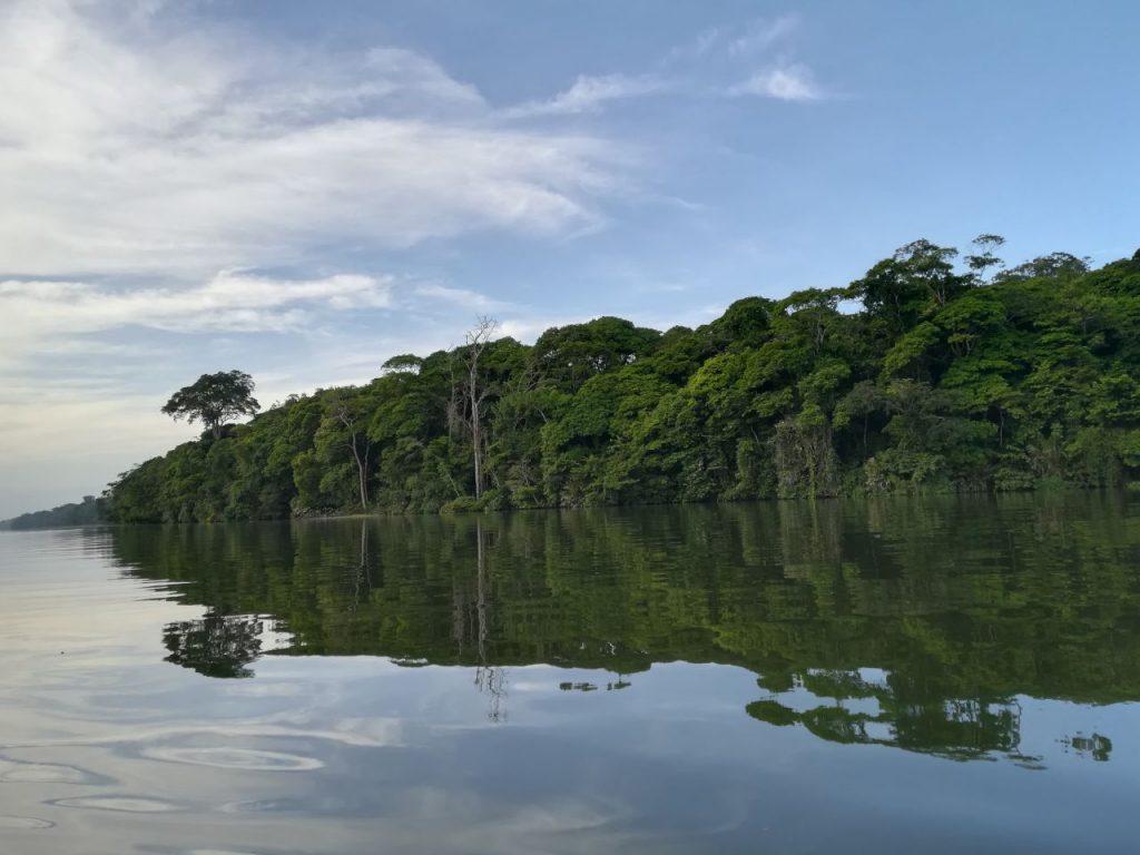 vue de la lagune depuis la forêt