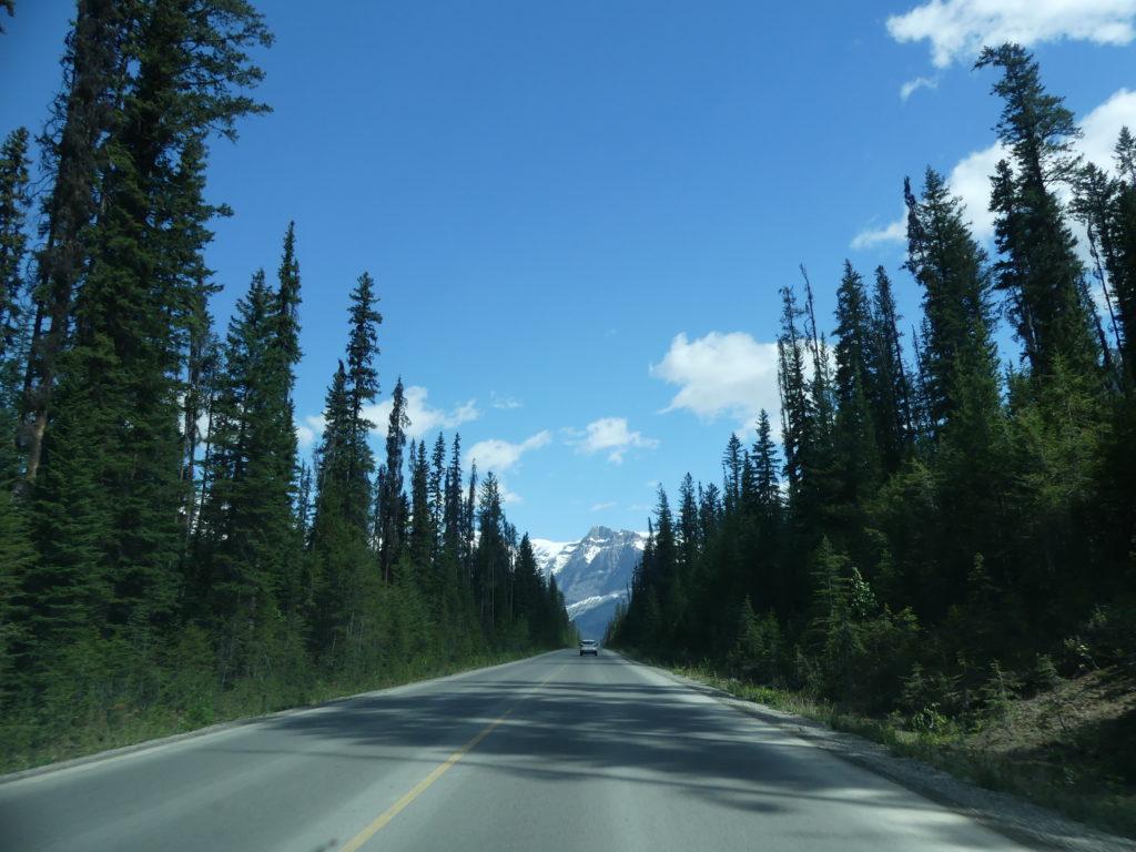 la route pour aller vers le lake Emerald - Yoho NP