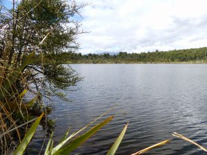 lake Mistletoe, te Anau Downs