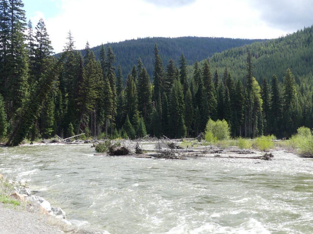 rivière en crue et décor typique des rocheuses