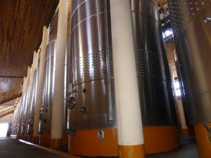 de grosses cuves pour le vin blanc : le rouge est mis dans des citernes de béton