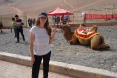 Balade en chameau ? Non merci j'ai déjà fait