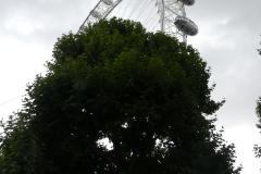 Londres jour 3 (23)
