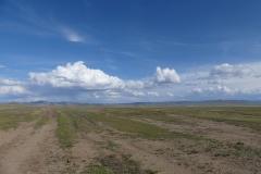 quelques cumulus sous une lègère couche de cirrus