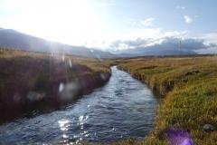 Torrent calme dans le vallon