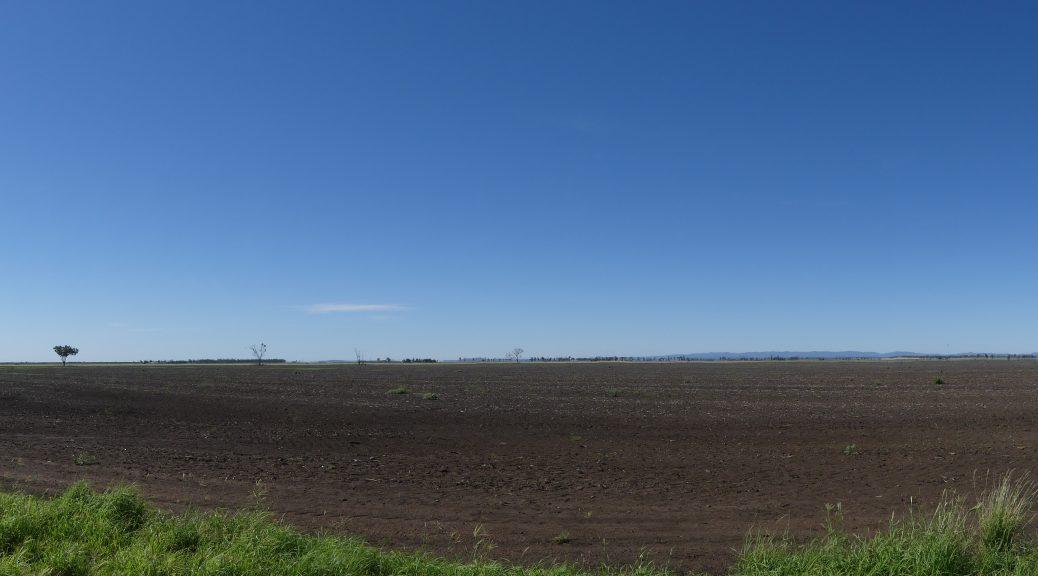 début de l'outback